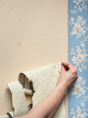 Wallpaper removal by R&F Paint Corp..